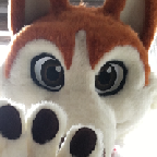 snowdog аватар